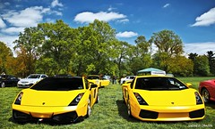 Gallardo's (Andrew Cragin Photography) Tags: auto new york old two italy ny cars beautiful beauty car yellow race america canon island eos rebel cool italian automobile long italia european rear stock fast expose bull best explore mounted expensive lamborghini rare exclusive fastest extraordinary automobiles v10 gallardo modded exotics raging combos westbury lambo explored 200mph shutterspeedphotos