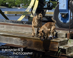 Dock-184 (Eurosportk9) Tags: canada on manotick
