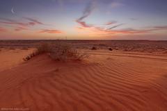 ( ibrahim) Tags: sunset sky sun moon nature clouds canon landscape photography sand desert crescent drought sands ibrahim abdullah     50d  canon50d  tokina1116mm