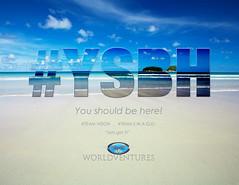 #YSBH (mrender) Tags: flickrshop