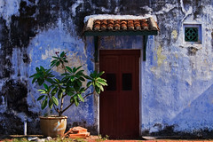 A backdoor (Itchyklikfinger) Tags: 2005 door blue urban plant wall canon asia canon300d decay penang backdoor platinumheartaward