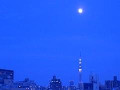 "Blue Moment""Light up"" (mirei24) Tags: blue moon japan night tokyo   nightview          bluemoment skytree  tokyoskytree"