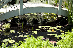 Monet bridge and lily pads (Kimburlee) Tags: chihuly dallastexas dallas texas 66acregarden exhibit dallasarboretum arboretum gardens flowers glass sculpture sculptures dalechihuly artist art