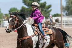 0521 IMG_8395 (JRmanNn) Tags: horses lasvegas hsa lvga hendersonsaddleassociation lasvegasgymkhanaassociation