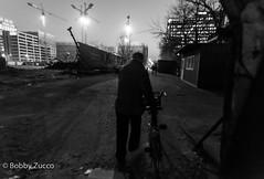 Walking Home (ZUCCONY) Tags: china cn beijing bobby 2016 zucco beijingshi bobbyzucco pedrozucco