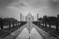 Taj Mahal, Agra (hippo350) Tags: world india monument wonder agra
