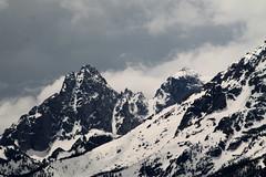 yllwttn-11 (srosscoe) Tags: mountains tetons grandtetonnationalpark jacksonlakelodge
