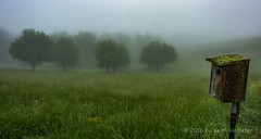 Foggy Meadow (HD_Keith) Tags: usa nature ecology weather fog landscape scenery va land environment environmentalism ecosystem copperhill virginiahighlandhaven