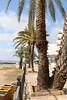 IMG_1571.jpg (hjimmy schlüter) Tags: eivissa illesbalears spanien es ibiza 2016 haus garten öffentlich