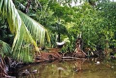 untitled. (rwed) Tags: trip travel nature trekking costarica corcovado motorbike jungle backpack drake yashica centralamerica baha drakebay mochilero