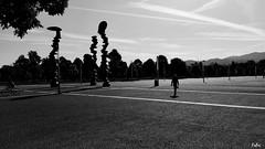 IMG_20160525_084855_001_ff (fabri192020) Tags: street blackandwhite torino monocromo biancoenero allaperto piazzadarmi