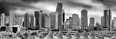 View of downtown Miami, Florida, U.S.A. / The Magic City (Jorge Marco Molina) Tags: urban usa building skyscraper cosmopolitan downtown cityscape realestate metro florida miami highrise metropolis metropolitan density centralbusinessdistrict magiccity sunshinestate miamidadecounty