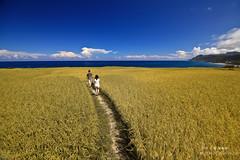 () Tags: ocean blue sea water tour taiwan oceans  hualien        greeb              11
