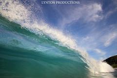 IMG_9463 copy (Aaron Lynton) Tags: beach canon hawaii big paradise surf waves sigma wave maui surfing spl makena shorebreak lyntonproductions