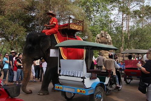 What fun! Cambodia