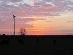 Sunset (CambridgeSustainability) Tags: sunset windturbine greenelectricity