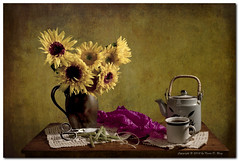Still Life - Sunflowers 2 (GlixPix) Tags: flowers light flower color art floral beautiful beauty canon studio lights still flora colorful dramatic study sunflowers bloom fullframe pewter blooming cutflowers filllight freshflowers greatphotographers perfectpicture canonef50mmf25macro pewterpitcher canon5dmkii ascorflash glixpix kevindrenz kevinrenz kdrenz