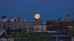 Met Life Moon (Roblawol) Tags: nyc newyorkcity moon ny newyork skyscrapers manhattan fullmoon queens astoria empirestatebuilding metlife