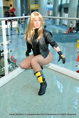 Black Canary: Ready for Anything (Roxanna Meta) Tags: comics costume cosplay dccomics blackcanary wondercon dinahlance wondercon2012