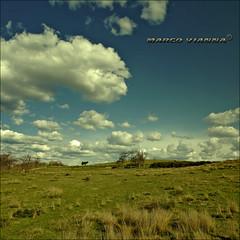 El Olor de las Nubes (m@tr) Tags: barcelona sky espaa naturaleza clouds olympus cielo nubes reportaje epl1 mtr marcovianna fotosderipollet zuikoed1442mmf3556 ripolletnatura elolordelasnubes