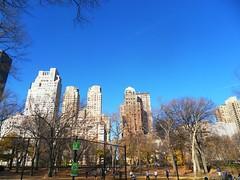 New York(769)