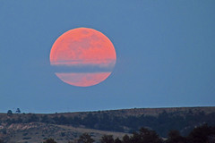 Super Moon: Colorado Springs, Colorado (CO) (Floyd Muad'Dib) Tags: usa moon america us colorado unitedstates united super moonrise springs coloradosprings co states rise coloradospringscolorado coloradospringsco supermoon