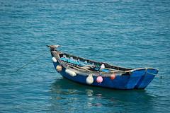 Seagulls Boat (bernmendes) Tags: ocean sea seagulls fish primavera portugal water canon bay boat mar spring fishing fisherman agua barco gaivotas may fisher pesca cascais maio oceano pescadores baia 600d
