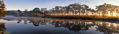 Introspection (southern_skies) Tags: trees water reflections australia queensland granitebelt ballendine