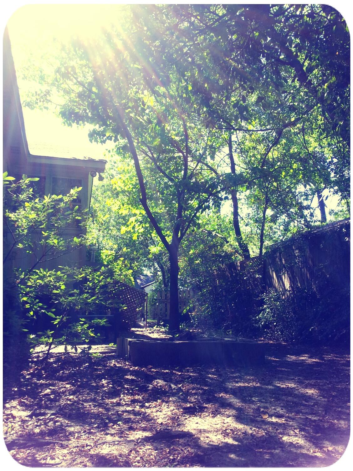 2012-04-07 15.44.15_Josh_Round.jpg