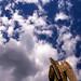 Cincinnati - Spring Grove Cemetery & Arboretum Angel - Into the Clouds