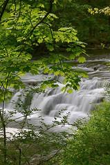 Waterfall With Leaves (+David+) Tags: waterfall corbettsglen allenscreek postcardfalls intentionalleaves
