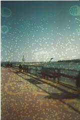 Pier2 (stellabella12) Tags: film pier disposablecamera destroyed waterlogged