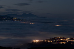 turri nebbia