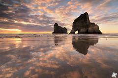 Unimpressed Seagull (aka Wharariki Lightstorm) (Joshua Cripps) Tags: ocean sunset newzealand reflections sand southisland glassy whararikibeach archwayislands