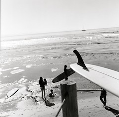 another day at the point, santa cruz, april 2012 [#002702] (Jeff Merlet Photography) Tags: ocean california family people blackandwhite bw usa santacruz baby 120 film beach water sailboat kid log toddler rocks published surf post pacific surfer board horizon contest mother logs rope surfing hasselblad kelp surfboard longboard 100 fin eastside 2012 lineup planar negatif thepoint pleasurepoint orangefilter logjam hassy 250mm adox 0227 chs100 planar80 scphoto 022702 thelanetowaddell jeffmerletphotography jeffmerlet photojeffmerletcom gammasanfrancisco 20120428 2012042 gamma0738 orangefil r0227