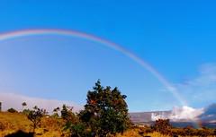 Mountain Rainbow (belindah-Thank You!-550,000 Views Now) Tags: sky nature hawaii rainbows upcountrymaui