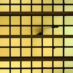 Walking (dmelchordiaz) Tags: madrid glass walking pie foot floor walk steps ceiling step paso cristal cibeles andando techo suelo andar pasos flickrduel dmelchordiaz