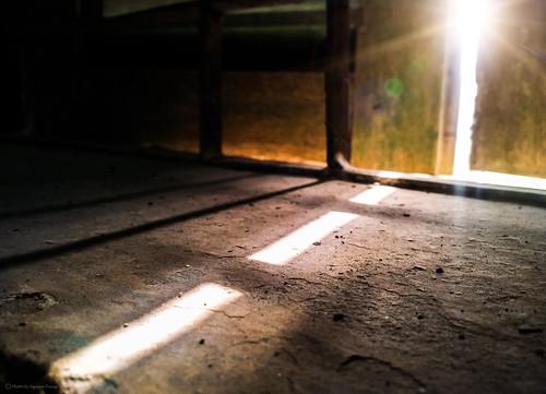 Light and the dark.