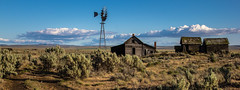 Kent farm (Rodney Harvey) Tags: house abandoned windmill rural desert decay farm sage weathered desolate 3b5998