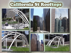 California St rooftops architecture collage (Aqua and Coral Imagery) Tags: sculpture blur art rooftop nature collage architecture garden landscape photo effect