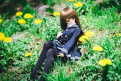 DSCF5028 (YUSHENG HSU) Tags: doll 日本 ドール dd volks 人偶 hokkaidō dollfiedream ドルフィードリーム hakodateshi ボークス
