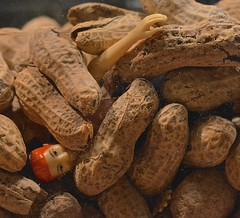 Emily Elkins Trapped Under an Avalanche of Peanuts (ricko) Tags: toy actionfigure trapped nuts peanuts 2016 141366