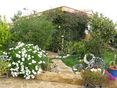 Im Garten 002 (wilhelm.haardt) Tags: antjes blumen peniscola imgarten