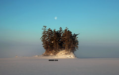 North Pole (photoluver1) Tags: trees winter mist lake snow ontario canada cold ice nature beautiful beauty weather fog forest island frozen outdoor gorgeous