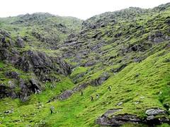 Eisc an Chuilleann, ridge to Cnoc an Chuillean on the right. -DSC06616 - (JJC2008) Tags: eisc chuillinn reeks kerry bishopstown bhc gully