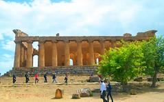 Valley of the Temples - Temple of Concordia 5 (Sussexshark) Tags: holiday temple concordia sicily vacanza sicilia agrigento valledeitempli valleyofthetemples 2016