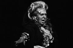 Verdi and the rise of the mezzo-soprano