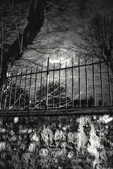 Petite fantaisie lugubre sur un mur Parisien (jacques.missud) Tags: blackwhite fences walls murs grilles
