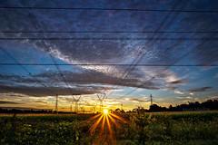 Power Grid (Matt Molloy) Tags: trees sky sun ontario canada field lines clouds sunrise landscape photography corn bath powerlines telephonelines rays lovelife mattmolloy