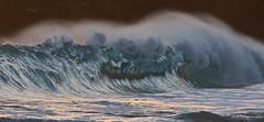 waves a plenty (bluewavechris) Tags: ocean sea water canon hawaii surf tube barrel wave maui spray telephoto lip swell makena shorebreak oneloa